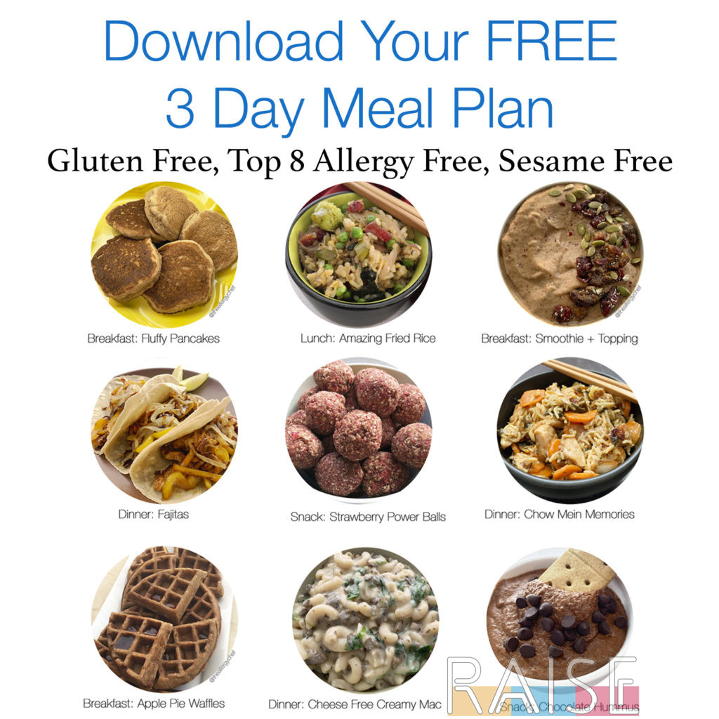 Free Top 8 Free Meal Plan by The Allergy Chef